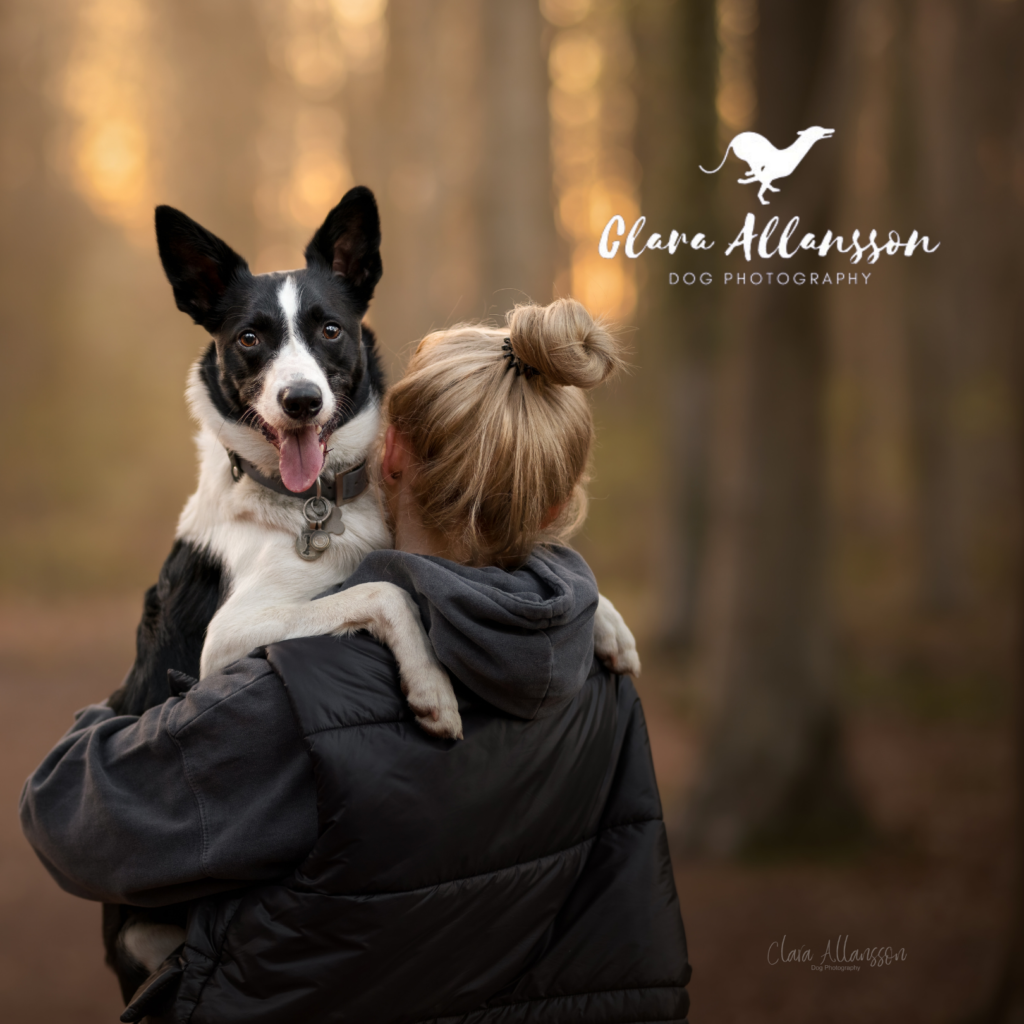 Charity Photoshoot in aid of Phoenix Rehoming